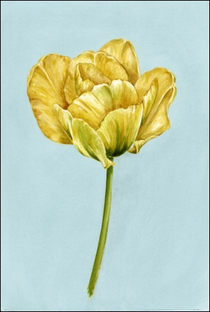 Madelyn Jordon Fine Art Everlasting Blooms: A Virtual Mother's Day Sale