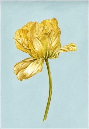 Madelyn Jordon Fine Art Everlasting Blooms: A Virtual Mother's Day Sale  Grace III
