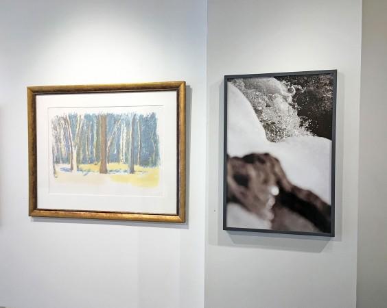 Madelyn Jordon Fine Art STAGING NATURE: A WORLD UNTO ITSELF 25