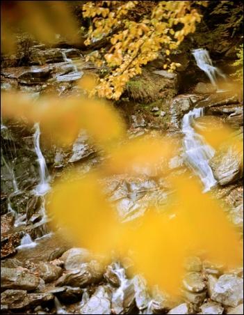 """Madelyn Jordon Fine Art """"Susan Wides: Selected Works"""" Bastion Falls"""