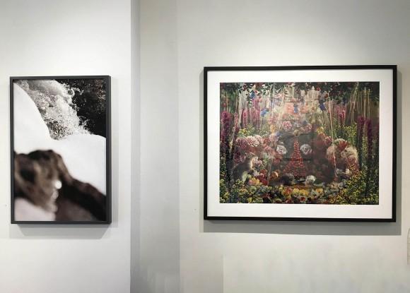 Madelyn Jordon Fine Art STAGING NATURE: A WORLD UNTO ITSELF Install 5