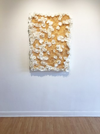 Madelyn Jordon Fine Art BARBARA HIRSCH: ALL AFLUTTER Install 8