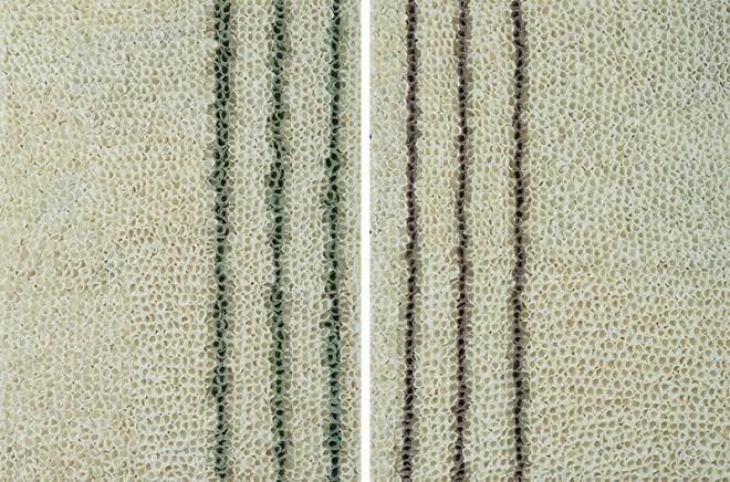 Madelyn Jordon Fine Art BARBARA HIRSCH: ALL AFLUTTER Latitude Right & Left (diptych)