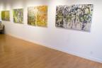 Madelyn Jordon Fine Art Michelle Sakhai: Treasured Elements Install 3