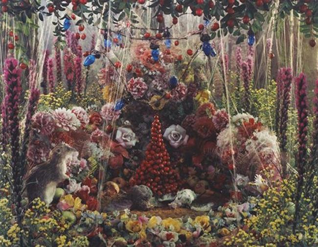 Madelyn Jordon Fine Art STAGING NATURE: A WORLD UNTO ITSELF Untitled (Natural Wonder Series)