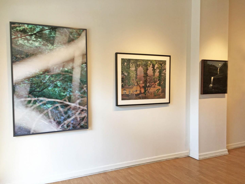 Madelyn Jordon Fine Art STAGING NATURE: A WORLD UNTO ITSELF Install 1