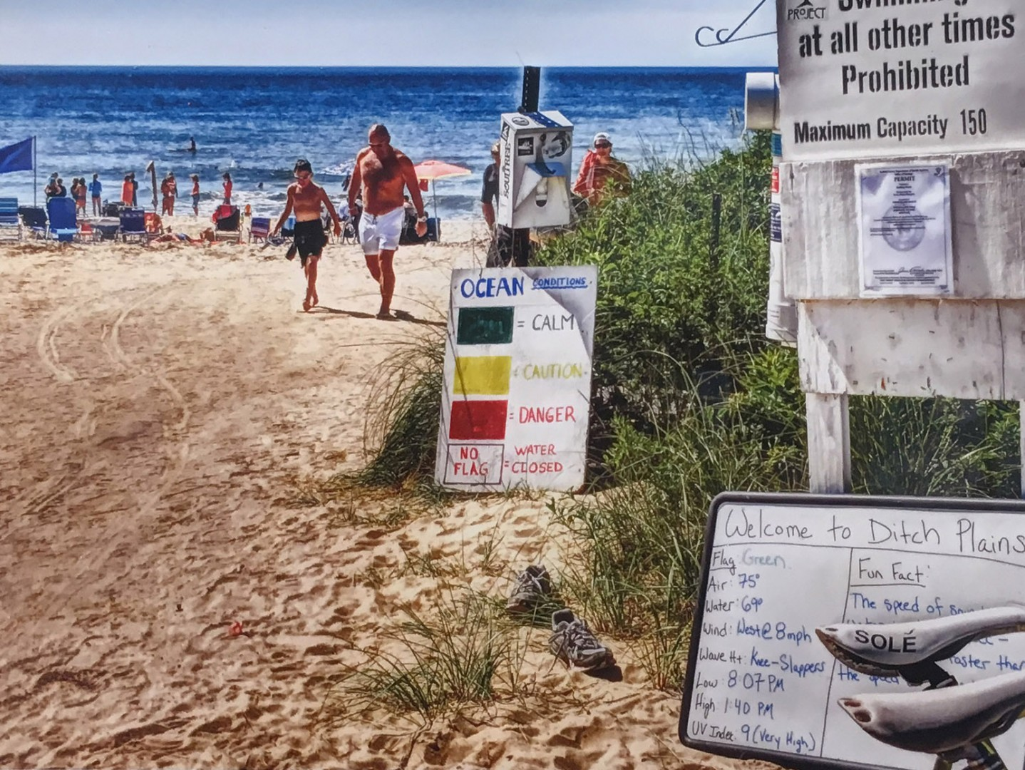 Madelyn Jordon Fine Art DJ Leon Ditch Plains Beach